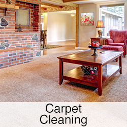 carpet cleaning link
